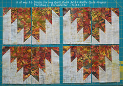 8 of my 16 Blocks for 2019 Quilt Guild Raffle Quilt Group Project - 3-11-19