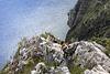 Climb to Cima Capi