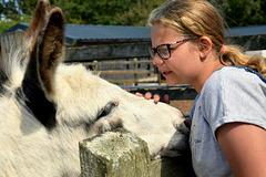 Donkey Love!
