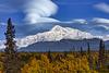 Mt. Denali in Autumn