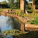 Fourteen Locks Canal Pond