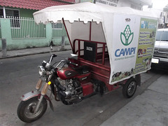 Transport Dazon