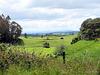 Across Farmlands.