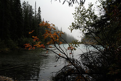 Kootenay national Park, Olive Lake