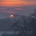Rising through the mist