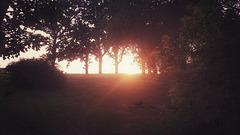 last light....