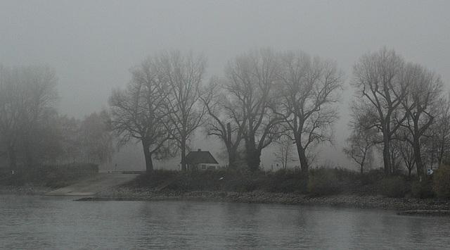 ... am Rhein