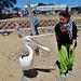 Phillip Island with Jennifer & William