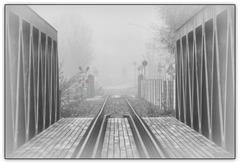 Happy Foggy Fence Friday