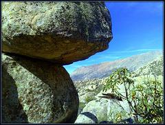 Granite.  Sierra de La Cabrera