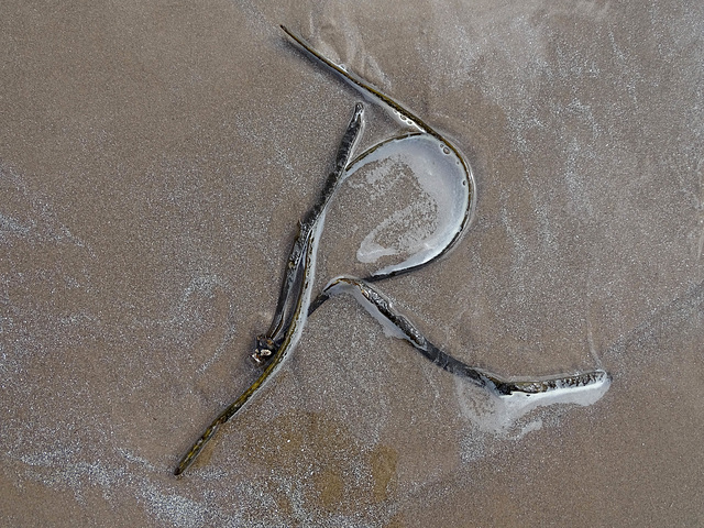 I love letters in the sand