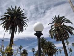 Boule de cocotiers / Coconut trees crystal ball