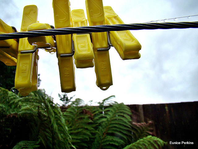 Yellow Pegs.