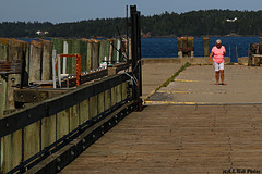 Pink Lady on the Pier