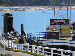 Waitin' for the Chemainus Ferry -- HFF