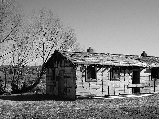 Black and white farm