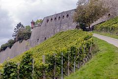 Auf dem Weg zur Festung Marienberg