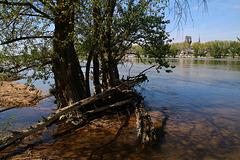 Décrue de la Loire