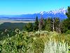 Jackson Hole & Grand Tetons