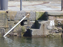 whn - higher tide 1