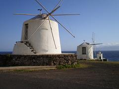 White windmills.