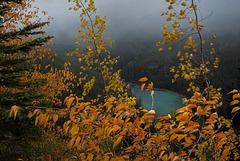 Kootenay national Park L1010462