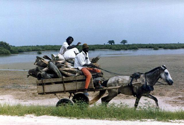 Gambia, 1986, digitalized