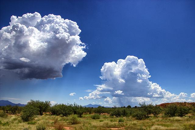 Growing Rain Clouds