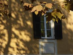 autunno a Savona