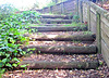 Steps From the Stream.