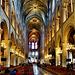 Paris - Cathédrale Notre-Dame