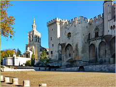 Avignon : La piazza del Palais des Papes e Notre Dame des Doms