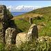 South West Peninsula Coast Path near Zennor Head