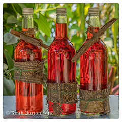 Three Bottles of Red