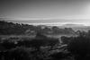 Misty Algarve morning, February 1st 2020