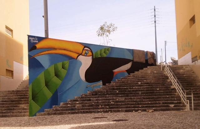 Toucan, by Márcio Bahia (Brazil).