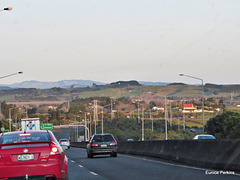 On Auckland's Southern  Motorway .
