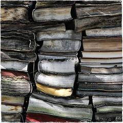 Das Schicksal der Bücher