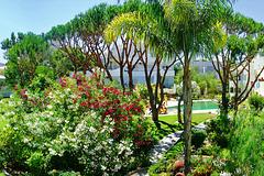 Jardins da Falésia, Portugal