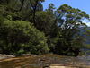 Wentworth Waterfalls