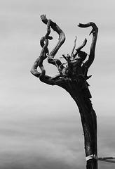des racines et des ailes..