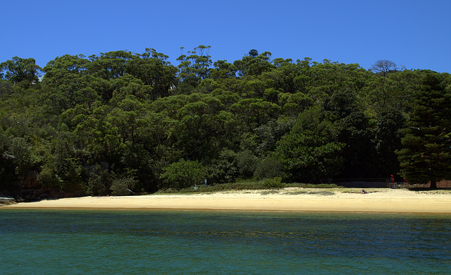 Beach at Manly Quarantine Station