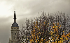 St. Andrews Presbyterian Church steeple plus dramatic clouds & autumn gingko