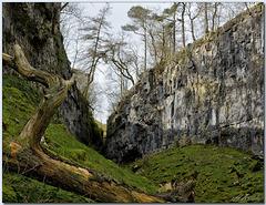 Trow Gill Gorge