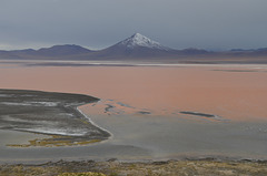 Bolivian Altiplano, Red Surface of the Laguna Colorada and Cerro Pabellón (5498m)