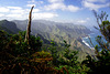 North-East of Tenerife