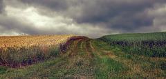 Vor dem Gewitter - Before the thunderstorm
