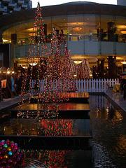 ABU DHABI - Noël 2006