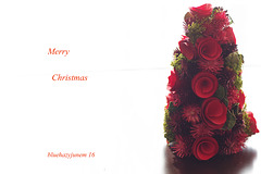 Merry Christmas to all my Ipernity Friends!
