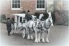 A Carriage Awaits